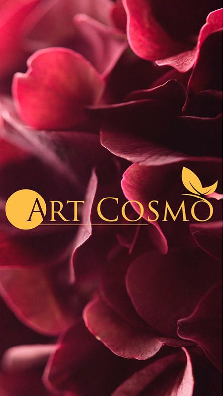 Эстетическая косметология Art cosmo (Запорожье)