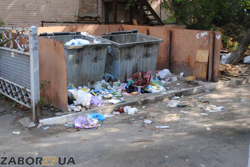 Рассыпанный мусор после отъезда Ремондиса (Запорожье)