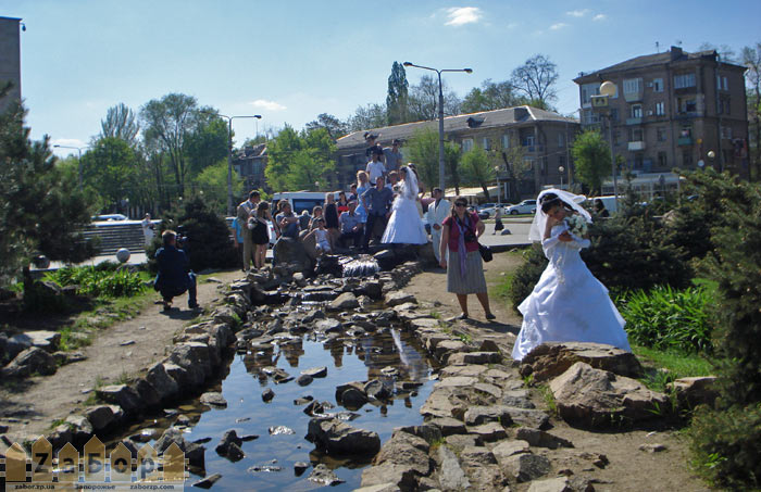 Фото на свадьбу в запорожье
