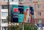 Хомяк - новый курс Тимошенко