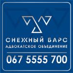 """Юридическая фирма """"Снежный барс"""""""