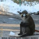 Победитель конкурса Прикольное Запорожье. Февраль 2013